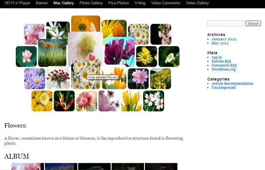 WordPress Photo Gallery WordPress Image Gallery WordPress